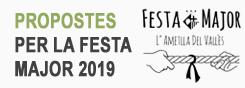 Enquesta FM 2019
